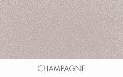 SheffieldMetals_Chips_Champagne2