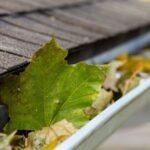 Essential Fall Home Maintenance